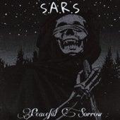 Peaceful Sorrow (Instrumental Version) by Sars
