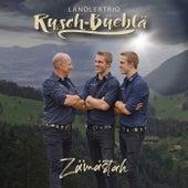Zämästah von Rusch-Büeblä
