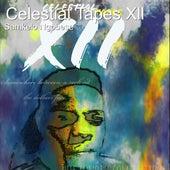 Celestial Tapes Xll de Samkelo Ngobese