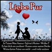 Liebe Pur von Various Artists