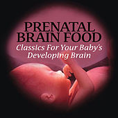 Prenatal Brain Food - Classics For Your Baby's Developing Brain by Various Artists