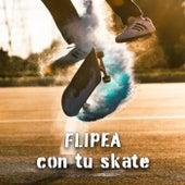 Flipea con tu skate de Various Artists