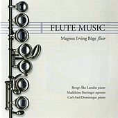 Flute Music by Various Artists