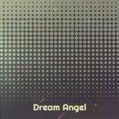 Dream Angel by Sunshine Twins, BillyJ.Kramer, Del Shannon, Xavier Cugat