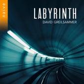 Labyrinth de David Greilsammer