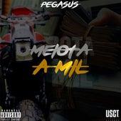 Meiota a Mil by Pegasus