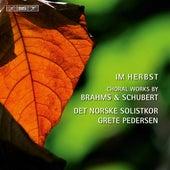 Im Herbst - Choral Works by Brahms & Schubert de Various Artists