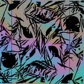 Hypercolor (feat. Chromonicci) by Goosetaf