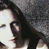 Pearl Street by Annie Gallup