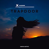 Trapdoor by Various Artists