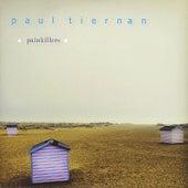 Painkillers by Paul Tiernan