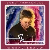 Maravilhado de Serginho Herval