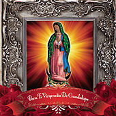 Para Ti Virgencita De Guadalupe by Various Artists