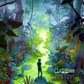 Neon Jungle (Lane 8 Remix) von Clozee