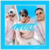 Melt by Allin