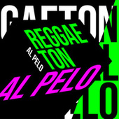 Reggaeton al Pelo de Various Artists
