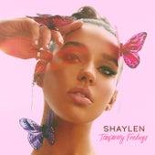 Temporary Feelings von Shaylen