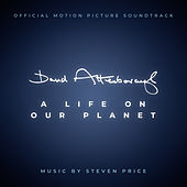 David Attenborough: A Life On Our Planet (Original Motion Picture Soundtrack) by Steven Price