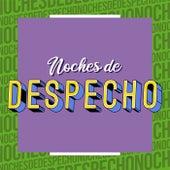 Noches de Despecho by Various Artists