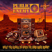 What You Gonna Do When The Grid Goes Down? de Public Enemy