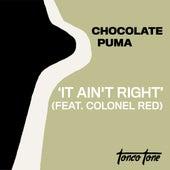 It Ain't Right (feat. Colonel Red) von Chocolate Puma