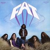 Fat von Fat
