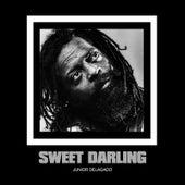 Sweet Darling by Junior Delgado