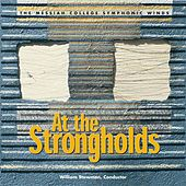 At the Strongholds von William Stowman