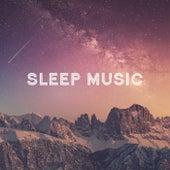 Sleep Music di Various Artists