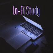 Lo-Fi Study de Various Artists