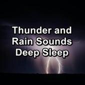 Thunder and Rain Sounds Deep Sleep de Thunderstorm Sound Bank