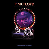 Learning to Fly (Delicate Sound Of Thunder Remix, 2020 Edit [Live]) de Pink Floyd