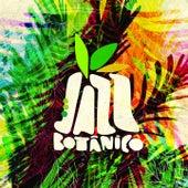 Sacolejo (Jazz Botânico) de Rodrigo Sha