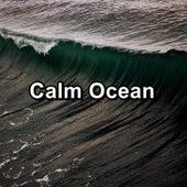 Calm Ocean by Spa Music (1)