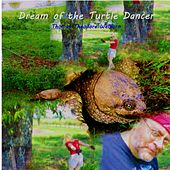 Dream of the Turtle Dancer by Thomas Theodore Welborn