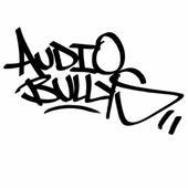 Gimme That Punk de Audio Bullys