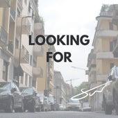 Looking For von Shiva