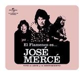 Flamenco es...Jose Merce de José Mercé