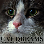 CAT DREAMS - Relaxing Music for Cats & Cat lovers Vol.2 by Marco Missinato