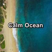 Calm Ocean von Sea Waves Sounds