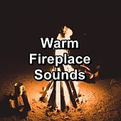 Warm Fireplace Sounds by Ocean Sounds Collection (1)