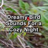 Chirping Birds Relaxing Music by Spa Zen
