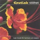 Exotisk Stillhet (Exotic Stillness) by Various Artists