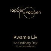 An Ordinary Day (Et Helt Almindeligt Liv) by Kwamie Liv