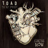 Starting Now by Toad the Wet Sprocket