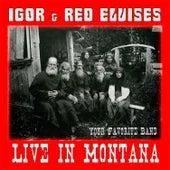Live in Montana de IGOR