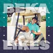 Likes fra BEKA