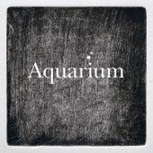 Le Carnaval des Animaux: VII. Aquarium by Roeland Hendrikx Ensemble