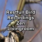 Restfull Bird Recordings Zen Livingroom von Yoga Flow