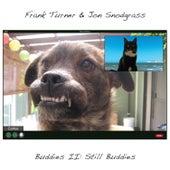 Buddies II: Still Buddies by Frank Turner